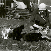 A woman cleaning fish out in the yard, being carefully observed by the cats. Vörå, 1920–1930's.   Photographer: Erik Hägglund.  Archive collection: The Society of Swedish Literature in Finland (SLS), sls.finna.fi SLS 865 B 303